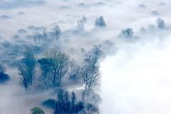 Airuno_8 (Riboli Alessandro) Tags: light rio fog alberi landscape nikon alba fiume natura nikkor sole nebbia atmosfera luce ai paesaggio lecco magia 80200 mattino foschia d700 airuno