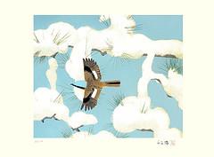 Daurian redstart (Japanese Flower and Bird Art) Tags: bird art japan modern print japanese phoenicurus matsuo lithograph redstart toshio daurian muscicapidae auroreus readercollection