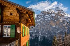 Mrren and Jungfrau (4158 m) (Javier Palacios Prieto) Tags: blue sky cloud house snow mountains alps green window azul clouds schweiz switzerland wooden suiza haus alpen montaa lauterbrunnen nube jungfrau mnch mrren schwarzmnch