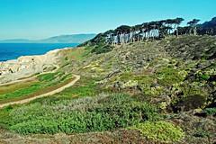 copse (BehindBlueEyes) Tags: sanfrancisco california ca landsend