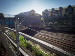 (bigboysdad) Tags: urban au australia olympus newsouthwales 24mm 12mm newtown ep5