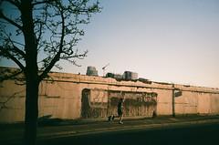 Untitled (glossormatt) Tags: urban man tree london construction grim running