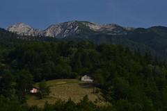 Blue/deep green (klestaaaaaa) Tags: summer mountain mountains europa europe european kosova kosovo balkans peja summerholiday peje bjeshka rugova bog rugove bjeshke bjeshkt prokletije republicofkosovo republikaekosoves prokletijemountains bjeshktenamuna
