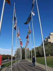 Flag flying in Canberra (spelio) Tags: blue sky plane silver court high shiny stream path walk aircraft mary jet row flags april canberra poles flagpole avenue waving act 2016