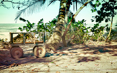 What it's doing here ? (Fabienne G) Tags: beach colors landscape costarica paysage objet plage hdr tortuguero