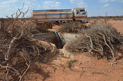 Refilling reservoirs in drought-hit Nugaal, Puntland (Ummah Welfare Trust) Tags: poverty africa charity food water children hope desert islam aid hunger muslims development humanitarian somalia somaliland developing puntland humanitarianism nugaal awdal