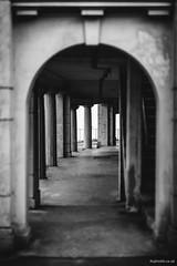 Untitled (Roj) Tags: uk blackandwhite bw monochrome wales concrete mono bokeh columns happyvalley llandudno conwy wideopen shallowdof northwales gogleddcymru canon5dmkii sigma85mmf14exdghsm photographersontumblr originalphotographers sourcerojsmithtumblrcom