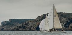 Club Nutic L'Escala - Puerto deportivo Costa Brava-6 (nauticescala) Tags: navegar costabrava regatas regata crucero comodor creuer velesdempuries