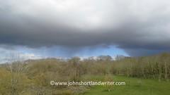 Rain's a-coming (john shortland) Tags: trees storm rain clouds thunder
