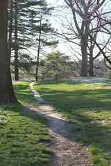 Path (pasa47) Tags: spring stlouis mo missouri april stl forestpark 2016 stlouiscity cityofstlouis