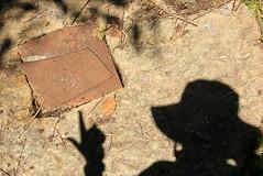 """revs """"pretty vacant"""" (Luna Park) Tags: nyc shadow sculpture ny newyork art metal pretty weld revs vacant lunapark"""