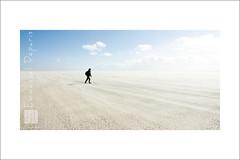 Alone (Emmanuel DEPARIS) Tags: blue sky france beach de sand nikon solitude alone wind cote pas plage emmanuel calais nord seul dopale deparis d810