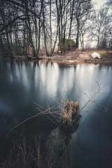 Enjoy the Silence (Magnus Eriksson75) Tags: longexposure nature water creek landscape skne sweden smooth samsung le sverige samyang nx500