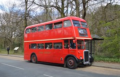 RTW467 LLU957 (PD3.) Tags: bus london buses museum vintage spring coach transport surrey gathering trust cobham annual preserved titan rtw preservation leyland psv pcv brooklands 467 2016 llu 957 rtw467 lbpt llu957
