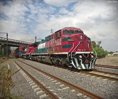 Rumbo al valle... (Artefacto27) Tags: train tren locomotive ge mexicano ferrocarril fxe ferromex ac44cw grupomexico
