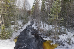 Torrente nel bosco, torrent in the wood (paolo.gislimberti) Tags: wood trees snow alberi forest reflections finland landscapes neve riflessi paesaggi conifers firs finlandia bosco foresta environments conifere abeti ambienti runningwaters acquecorrenti
