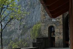 chapelle du Scex (bulbocode909) Tags: suisse vert arbres printemps valais falaises montagnes stmaurice forts chapelleduscex