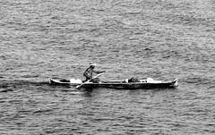Fisherman (1jonathan1) Tags: morning sea man water boat mar fisherman nikon waves zoom sunday caribbean cartagena olas pescador cartagenadeindias cartagenacitywall