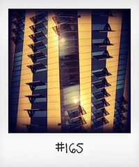"""#DailyPolaroid of 11-3-16 #165 • <a style=""""font-size:0.8em;"""" href=""""http://www.flickr.com/photos/47939785@N05/26741955816/"""" target=""""_blank"""">View on Flickr</a>"""