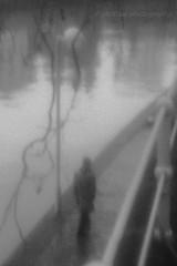 Silhouette en bord de Sambre (glidblue) Tags: shadow bw reflection water belgium walk decay rivire promenade decline reflets namur vanitas wallonie sambre totalphoto