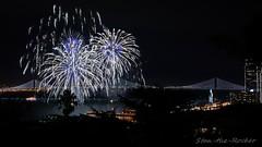View from Coit Tower - Bay Lights Re-Lighting and Super Bowl City Fireworks Show - 013016 - 08 (Stan-the-Rocker) Tags: sanfrancisco sony coittower northbeach embarcadero ferrybuilding telegraphhill nex sanfranciscooaklandbaybridge sfobb sb50 baylights sel1855 stantherocker