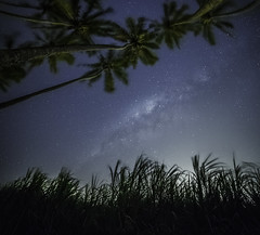 (BAMB 974) Tags: nightphotography sky stars nightscape toiles canne milkyway cocotiers larunion saintemarie voielacte bamb cannesucre ledelarunion champdecanne bamb974