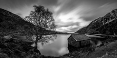 Llyn Ogwen (laura.hacking) Tags: uk longexposure travel winter blackandwhite panorama mountain lake snow cold reflection tree water monochrome wales architecture clouds landscape mono evening countryside nationalpark twilight rocks alone view cloudy unitedkingdom britain outdoor fineart wide atmosphere overcast wideangle landmark location snowcapped silence valley bluehour slate snowdonia boathouse bethesda stitched bnw conwy lonetree fineartphotography blackandwhitephotography waterscape tryfan llyn northwales llynogwen project52 appicoftheweek