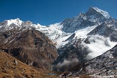 Walking Away (Pooja Pant) Tags: nepal mountains beautiful trek abc annapurna annapurnabasecamp macchapuchre