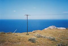 alone in the field (sometimesiburn) Tags: 35mm olympus 200 vista stylus plus agfa expired epic c41 mjuii