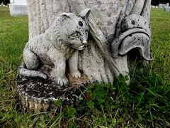 Cemetery (Gerri Gray Photography) Tags: ny newyork monument cemetery grave graveyard animal cat memorial feline tomb upstate graves gravestone marker mementomori unusual tombstones gravemarker taphophilia gerrigray