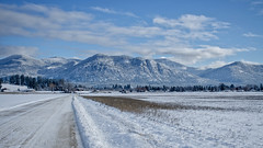 Coated with Snow!.jpg (Herringbone2) Tags: clouds blueskies backroads mountainrange newsnow snowcoveredmountains