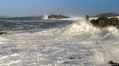 Tempête sur le littoral clédérois ... (Herbé) Tags: tempête storm vague wave sea mer hightide maréehaute cléder seascape crazhu crashingwave déferlante