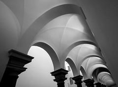 arches'n arches (Blende1.8) Tags: museum architecture sony columns wideangle arches architektur pillars sel dsseldorf k21 sulen nex sule gewlbe stndehaus bgen 1018mm a6000