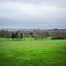 Cotswolds - at the Golf Club