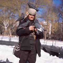 Another Bird Guy Sighting (CsMusick) Tags: park new york nyc guy rolleiflex zeiss square t washington crazy pigeon medium provia reversal wsp 75mm tessar
