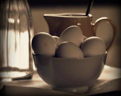 _eggs & milk (SpitMcGee) Tags: cup kitchen milk eggs jug kche bake kanne backen milch schale eier spitmcgee
