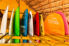 Tablas de Surf (Rafael Andres) Tags: republica sea vacation sun sol beach colors puerto mar surf playa colores arena plata dominicana caribbean vacaciones tabla encuentro caribe sosua