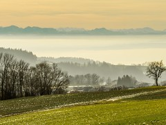 Blick in die Ferne (schasa68) Tags: sky mountains nature fog landscape austria nebel outdoor hiking natur feld wiese himmel berge gras landschaft obersterreich wandern eidenberg o upperaustria nebelmeer mhlviertel grasland hgelland nebelstimmung naturliebhaber eidenbergalm landschaftsliebhaber