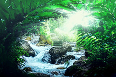 Light (shalomaker) Tags: morning light green nature stream peace rays