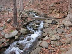 20151127,154427,Canon PowerShot S95 (orndorffr) Tags: mountain virginia hiking climbing va oldragmountain oldrag