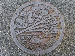 Yoshida Hiroshima, manhole cover 3 (広島県吉田町のマンホール3) (MRSY) Tags: japan hiroshima 日本 arrow manhole 花 yoshida マンホール 広島県 矢 吉田町