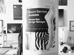 Please See Garage Manager (Depression Press) Tags: art collage pole escort risograph depressionpress