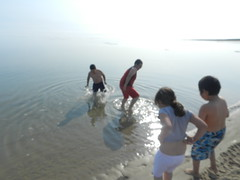 Going swimming at Long Point August 2015 12 (cambridgebayweather) Tags: swimming nunavut cambridgebay arcticocean