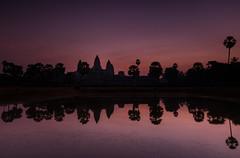 Pink Skies Over Angkor (Marshall Ward) Tags: reflection sunrise temple dawn asia cambodia southeastasia angkorwat temples siemreap 2016 nikond800 afszoomnikkor2470mmf28ged marshallward