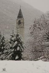 FIOCCHI (Lace1952) Tags: chiesa campanile piemonte neve piante nevicata fiocchi vco ossola trontano nikkor1755f2e8 italianikond7100