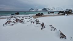 Myrland (vandrende) Tags: norway landscape norge nor paysage lofoten norvege landskap nordland leknes norland myrland