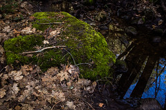 Mossy (NettikPhoto) Tags: morning travel winter red orange cold reflection green fall nature water beauty leaves horizontal creek forest canon river moss spring pond oak woods rocks stream clarity sedona eerie canyon rapids sharp adventure clear winner chilly t2 brisk t2i