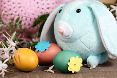 Easter Decorations for Home Decor for the Spring Holiday (Transient Eternal) Tags: pink people orange stuffedtoy white holiday color rabbit bunny green bunnies art love colors animals yellow kids easter children fun toys design spring furry hats craft tint plush celebration decorating eggs dye decorate homedecor oval hunt activities hardboiled jasmines jasminoides