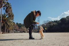 (Tridentz | ) Tags: blue sky rabbit animal japan day 28mm sunny ii gr feed ricoh  2016