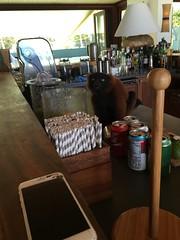 IMG_9045 (hannes g) Tags: island hannes richard das tortola branson magazin bvi necker briefkastenfirma grassegger panamaleaks